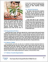 0000075904 Word Templates - Page 4