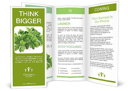 0000075907 Brochure Templates