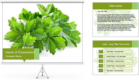 0000075907 PowerPoint Template