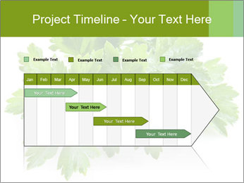 0000075907 PowerPoint Template - Slide 25