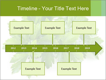 0000075907 PowerPoint Template - Slide 28