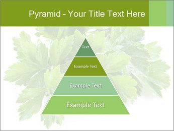 0000075907 PowerPoint Templates - Slide 30