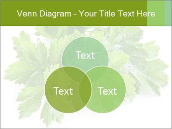 0000075907 PowerPoint Templates - Slide 33
