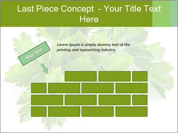 0000075907 PowerPoint Template - Slide 46
