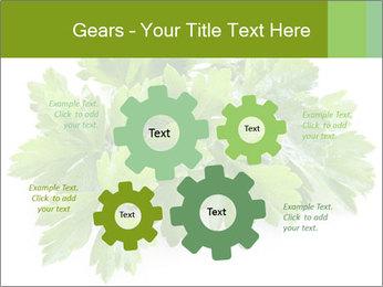 0000075907 PowerPoint Templates - Slide 47