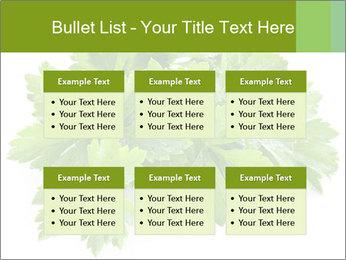 0000075907 PowerPoint Templates - Slide 56