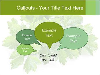 0000075907 PowerPoint Templates - Slide 73