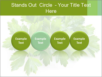 0000075907 PowerPoint Template - Slide 76