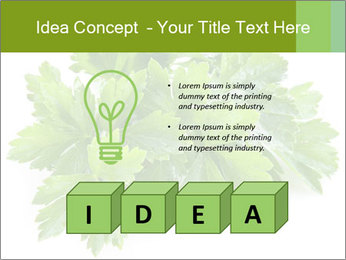 0000075907 PowerPoint Template - Slide 80