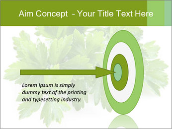 0000075907 PowerPoint Template - Slide 83