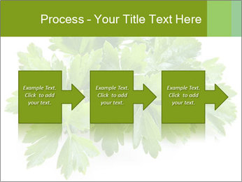 0000075907 PowerPoint Template - Slide 88