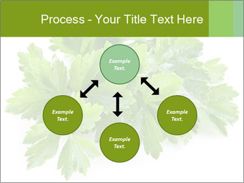 0000075907 PowerPoint Template - Slide 91