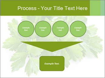 0000075907 PowerPoint Template - Slide 93