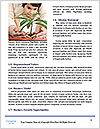 0000075923 Word Templates - Page 4