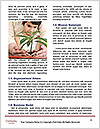 0000075930 Word Template - Page 4