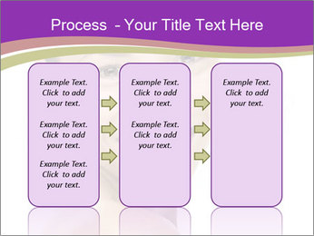0000075943 PowerPoint Template - Slide 86