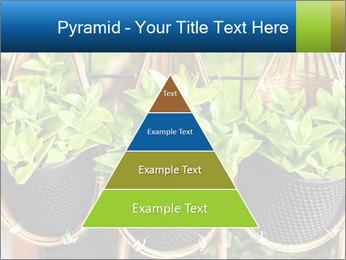0000075947 PowerPoint Templates - Slide 30