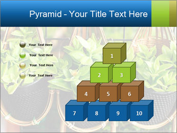 0000075947 PowerPoint Templates - Slide 31