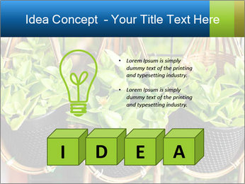 0000075947 PowerPoint Template - Slide 80