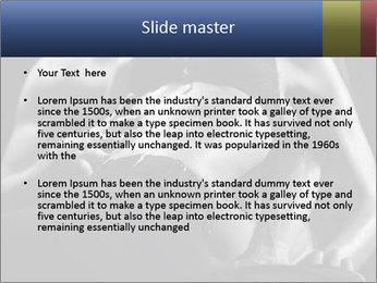0000075949 PowerPoint Template - Slide 2
