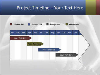 0000075949 PowerPoint Template - Slide 25
