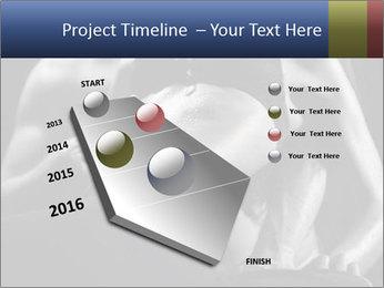 0000075949 PowerPoint Template - Slide 26