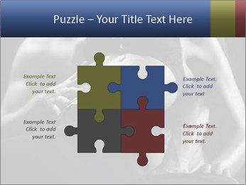 0000075949 PowerPoint Template - Slide 43