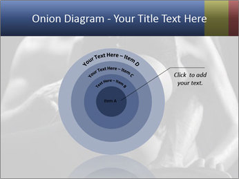 0000075949 PowerPoint Template - Slide 61