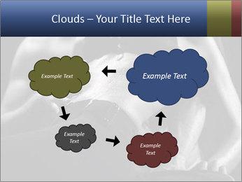 0000075949 PowerPoint Template - Slide 72