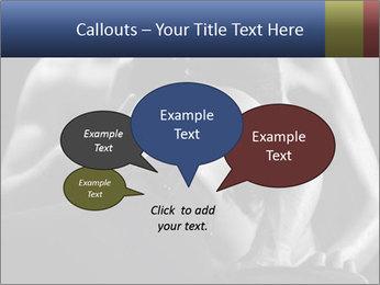 0000075949 PowerPoint Template - Slide 73