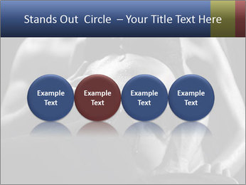 0000075949 PowerPoint Template - Slide 76