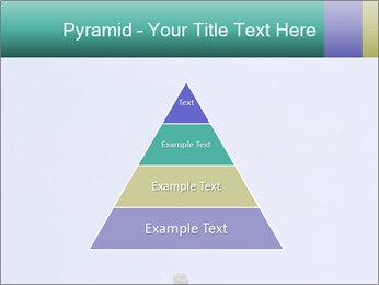 0000075957 PowerPoint Templates - Slide 30