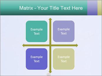 0000075957 PowerPoint Templates - Slide 37