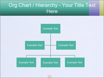 0000075957 PowerPoint Templates - Slide 66