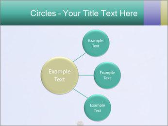 0000075957 PowerPoint Templates - Slide 79