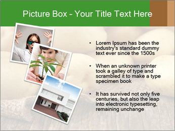 0000075965 PowerPoint Templates - Slide 17