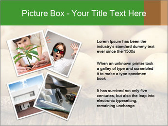 0000075965 PowerPoint Templates - Slide 23