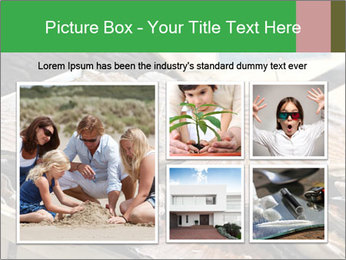 0000075967 PowerPoint Template - Slide 19