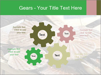 0000075967 PowerPoint Template - Slide 47