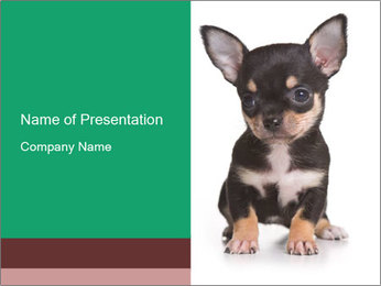 0000075971 PowerPoint Template - Slide 1