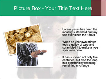 0000075971 PowerPoint Template - Slide 20