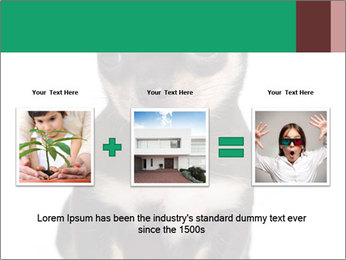 0000075971 PowerPoint Template - Slide 22