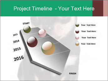 0000075971 PowerPoint Template - Slide 26