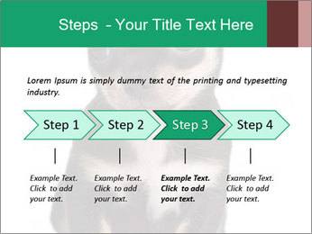 0000075971 PowerPoint Template - Slide 4