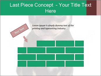 0000075971 PowerPoint Template - Slide 46