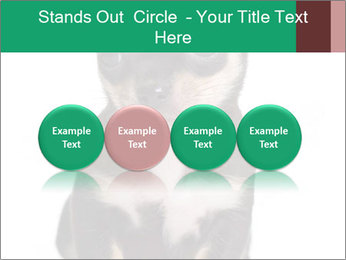 0000075971 PowerPoint Template - Slide 76