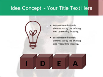 0000075971 PowerPoint Template - Slide 80