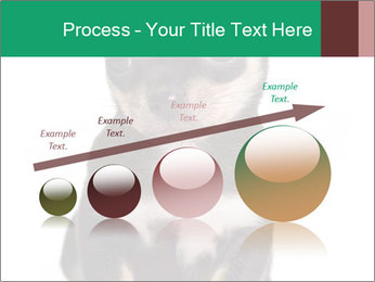 0000075971 PowerPoint Template - Slide 87