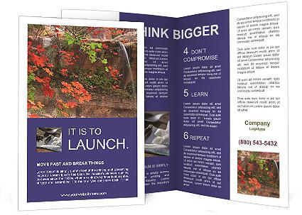 0000075977 Brochure Template