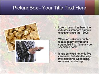 0000075977 PowerPoint Template - Slide 20